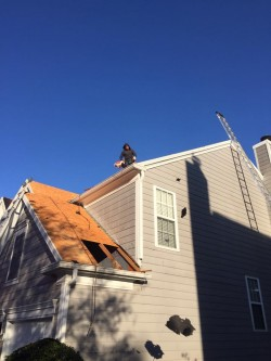 MDJ Roofing & Construction